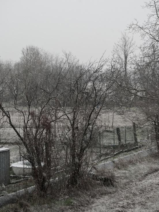 Paesaggio rurale in piena nevicata