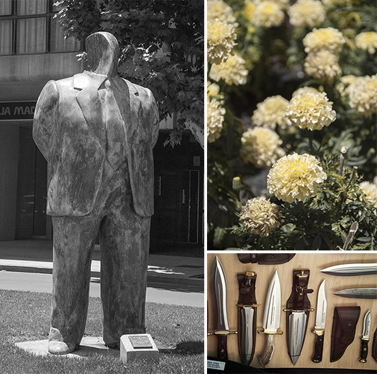 Statua, fiori e coltelli - Albacete