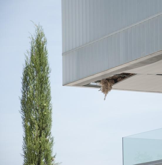 UCLM, Albacete - Edificio Polivalente -Particolare soffitto esterno