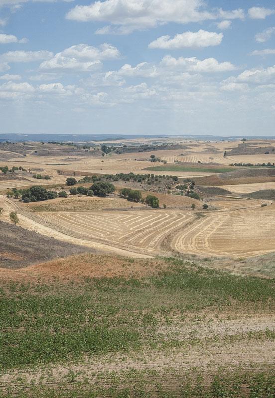 Paesaggio nel tragitto Albacete-Madrid in corriera